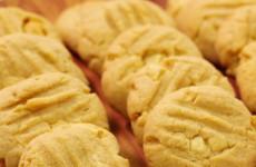 biscoitos_de_manteiga_de_amendoim_com_chocolate_branco